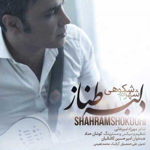 Shahram Shokoohi Delbar Tanaz 300x300 - دانلود آهنگ جدید شهرام شکوهی به نام دلبر طناز