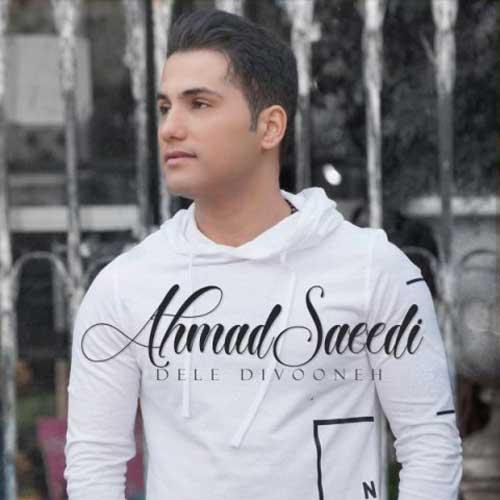 دانلود آهنگ جدید احمد سعیدی به نام دل دیوونه