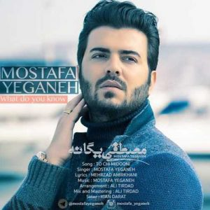 Mostafa Yeganeh To Chi Midooni Video 300x300 - دانلود ویدیو جدید مصطفی یگانه به نام تو چه میدونی
