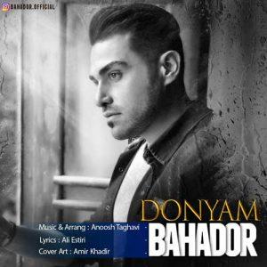 Bahador Donyam 300x300 - دانلود آهنگ جدید بهادر به نام دنیام