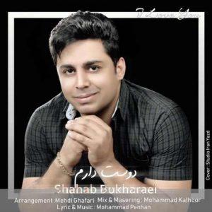 Shahab Bokharaei Dooset Daram 300x300 - دانلود آهنگ جدید شهاب بخارایی به نام دوست دارم