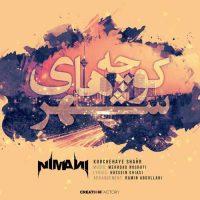 کوچه های شهر از نیمانی