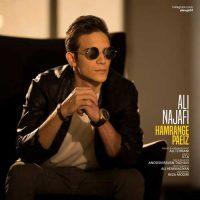 دانلود آهنگ جدید علی نجفی به نام همرنگ پاییز