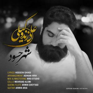 Ali Zand Vakili Shahre Hasood Video 300x300 - دانلود ویدیو جدید علی زندوکیلی به نام شهر حسود