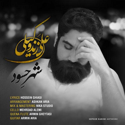 دانلود ویدیو جدید علی زندوکیلی به نام شهر حسود