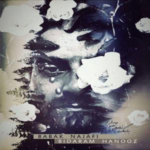 Babak Najafi Bidaram Hanooz 300x300 - دانلود آهنگ جدید بابک نجفی به نام بیدارم هنوز