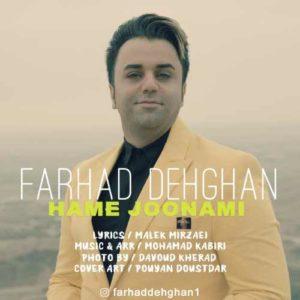 Farhad Dehghan Hame Jonami 300x300 - دانلود آهنگ جدید فرهاد دهقان به نام همه جونمی