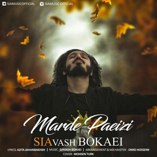 Siavash Bokaei Marde Paeizi - دانلود آهنگ جدید سیاوش بُکایی به نام مَردِ پاییزی