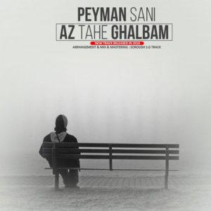 Peyman Sani Az Tahe Ghalbam 300x300 - دانلود آهنگ جدید پیمان ثانی به نام از ته قلبم