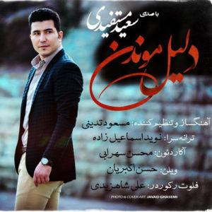 Saeid Mostafidi Dalile Moondan 300x300 - دانلود آهنگ جدید سعید مستفیدی به نام دلیل موندن