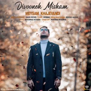 Meysam Khajevandi Divoone Misham 300x300 - دانلود آهنگ جدید میثم خواجه وندی به نام دیوونه میشم
