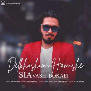 Siavash Bokaei Delkhoshimi Hamishe 300x300 - دانلود آهنگ جدید سیاوش بکایی به نام دلخوشیمی همیشه
