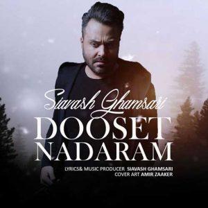 Siavash Ghamsari Dooset Nadaram 300x300 - دانلود آهنگ جدید سیاوش قمصری به نام دوست ندارم