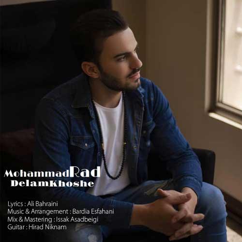 دانلود آهنگ جدید محمد راد به نام دلم خوشه