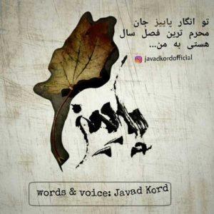 Javad Kord Paeez 300x300 - پاییز از جواد کرد