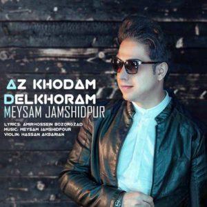 Meysam Jamshidpour Az Khodam Delkhoram 300x300 - دانلود آهنگ جدید میثم جمشیدپور به نام ازخودم دلخورم