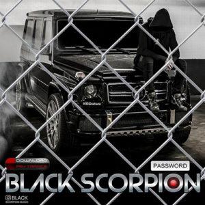 پسورد از Black Scorpion
