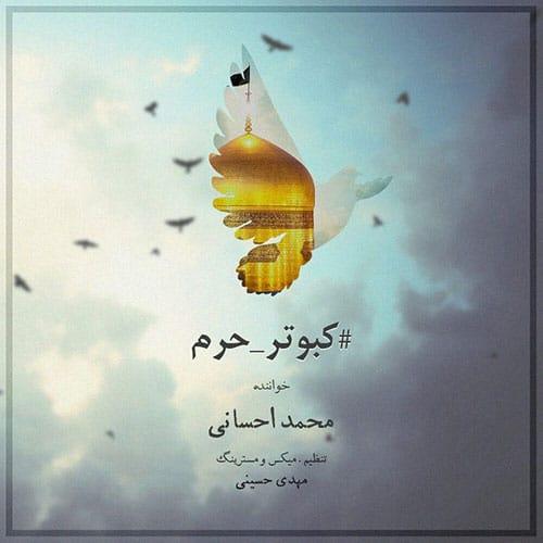 Mohammad Ehsani Kabootare Haram - کبوتر حرم از محمد احسانی