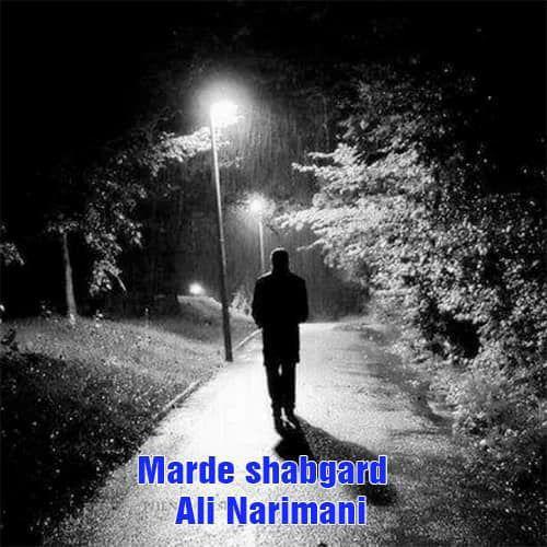Ali Narimani Marde Shabgard - مرد شبگرد از علی نریمانی