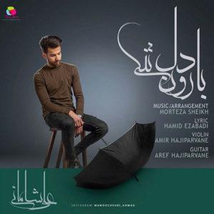 بارون دلتنگی از علی شامانی