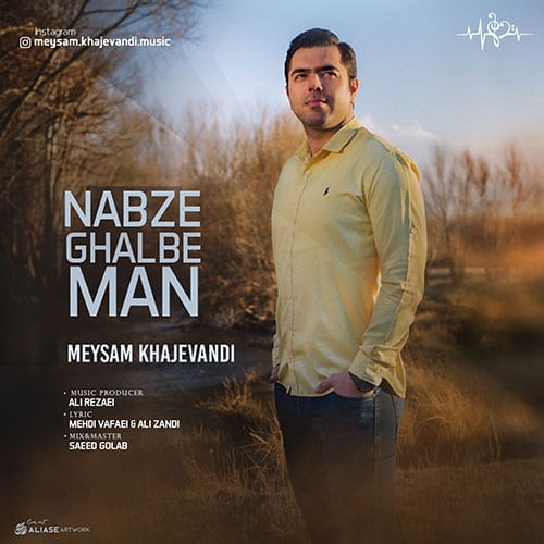 Meysam Khajevandi Nabze Ghalbe Man - نبض قلب من از میثم خواجه وندی
