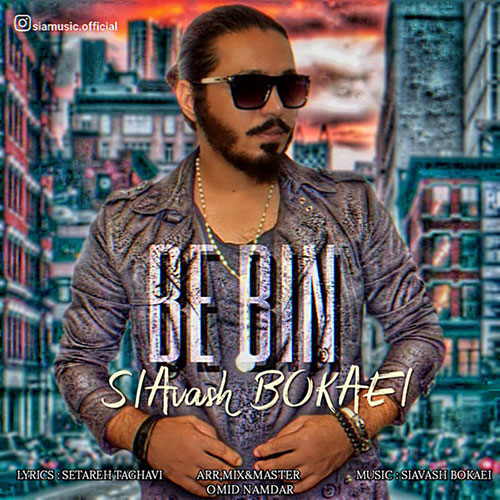 Siavash Bokaei Bebin - ببین از سیاوش بکایی