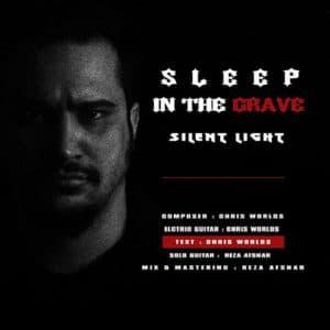 Sleep In The Grave از Silent Light