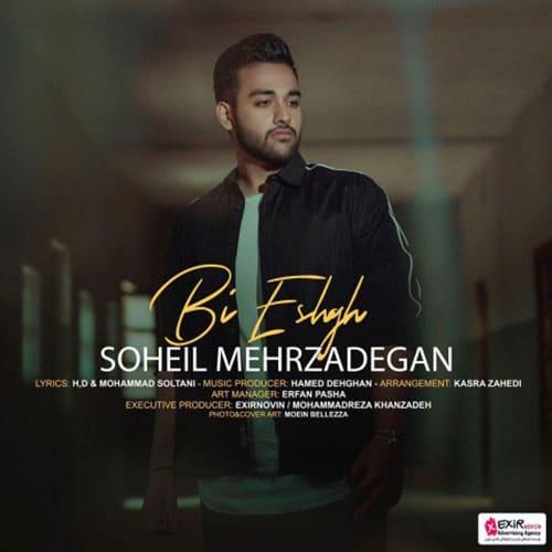 Soheil Mehrzadegan Bi Eshgh - بی عشق از سهیل مهرزادگان