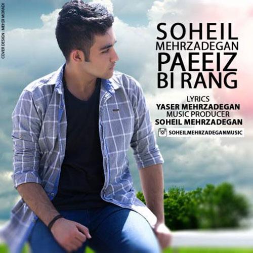 Soheil Mehrzadegan Paeiz Birang - پاییز بی رنگ از سهیل مهرزادگان